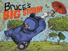 Bruce's big storm Book cover