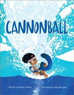 Cannonball Book cover