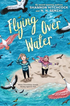 Flying over water Book cover