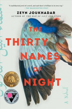 The thirty names of night : a novel Book cover